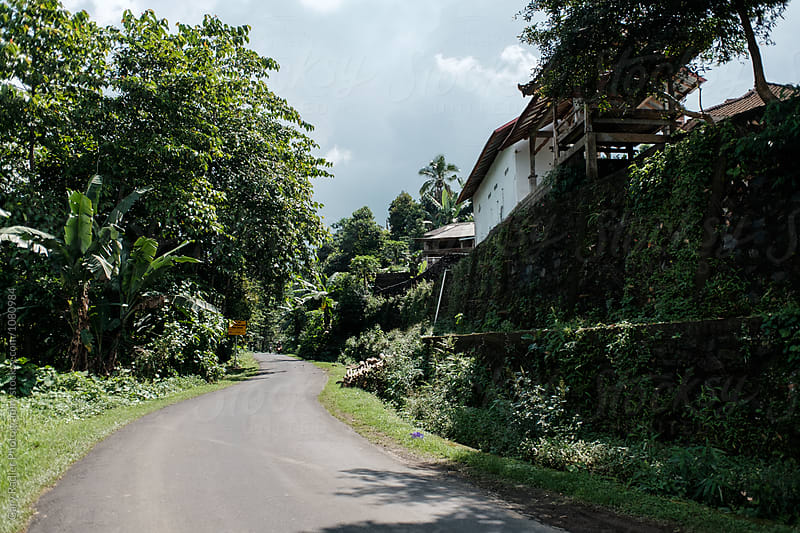 Country Road in Bali by Gary Radler Photography for Stocksy United