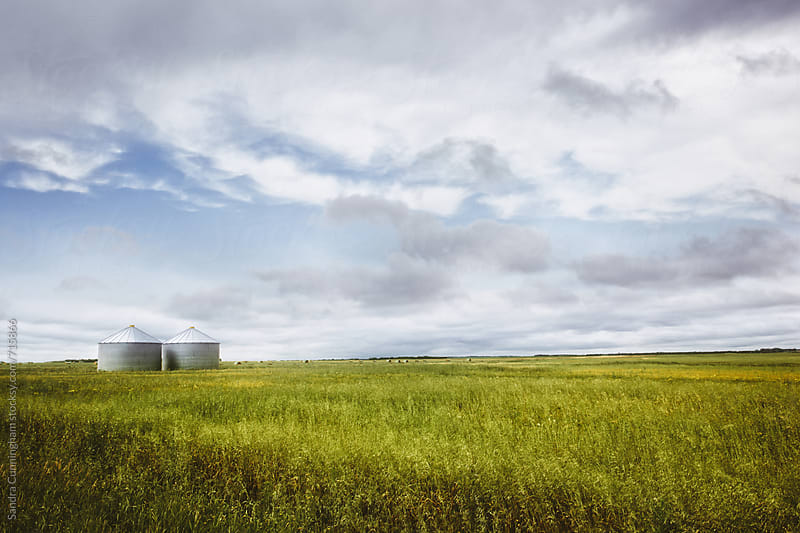 Farm silos on the open prairies by Sandra Cunningham for Stocksy United