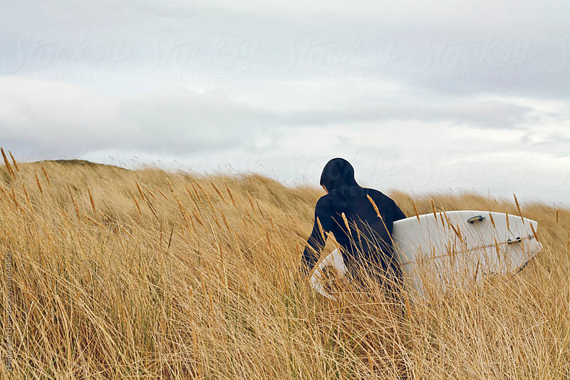 A surfers walking through the high grass of the dunes searching for waves by Denni Van Huis for Stocksy United
