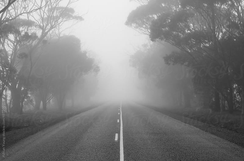 Road leading into the fog by Adrian Young for Stocksy United