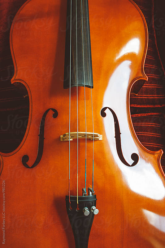 Cello by Raymond Forbes LLC for Stocksy United