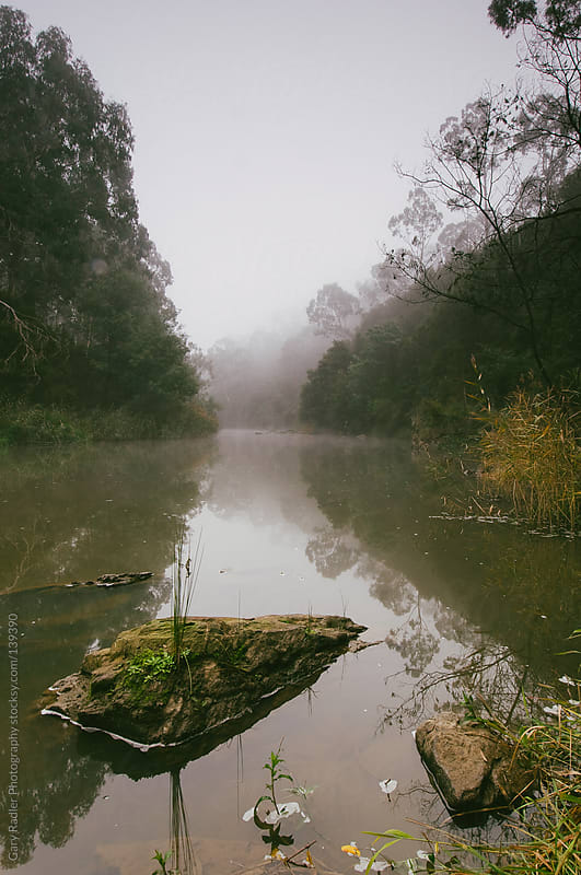 Yarra River, Warrandyte (Australia) by Gary Radler Photography for Stocksy United