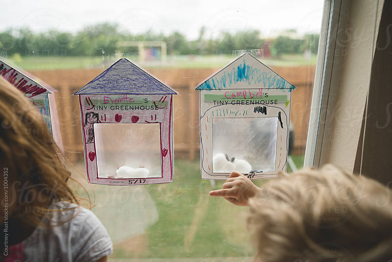 Greenhouses on the window by Courtney Rust for Stocksy United
