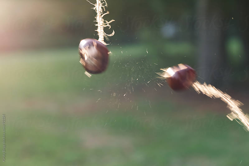 Colliding Conkers by Kirsty Begg for Stocksy United