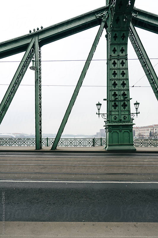 Budapest Bridge by Agencia for Stocksy United