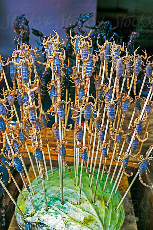 China, Beijing, Wangfujing Street, Snack Street Market selling Scorpians on skewers by Gavin Hellier for Stocksy United