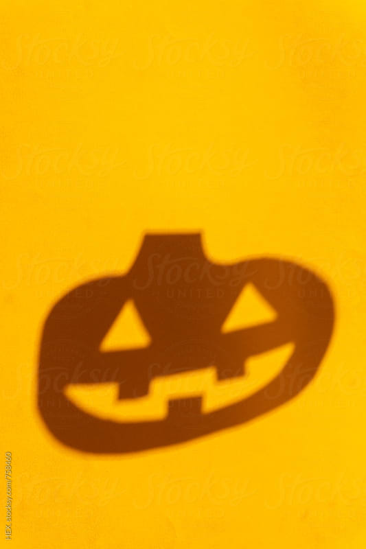 Halloween Pumpkin Orange Background by HEX . for Stocksy United