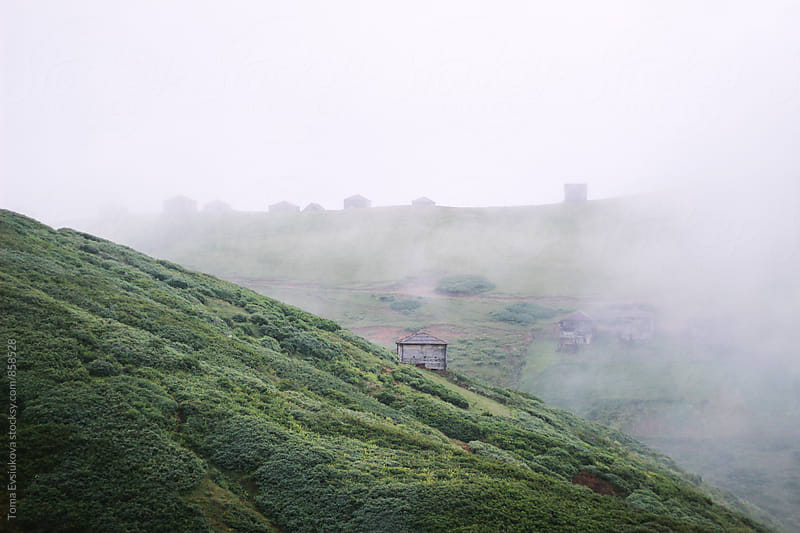The fog on the hill by Toma Evsiukova for Stocksy United