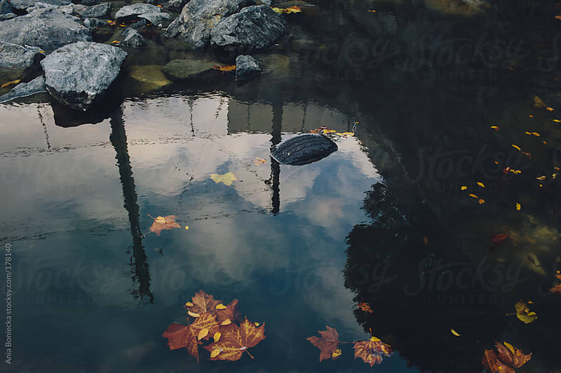 Refflection of the sky in a poluted pond by Ania Boniecka for Stocksy United