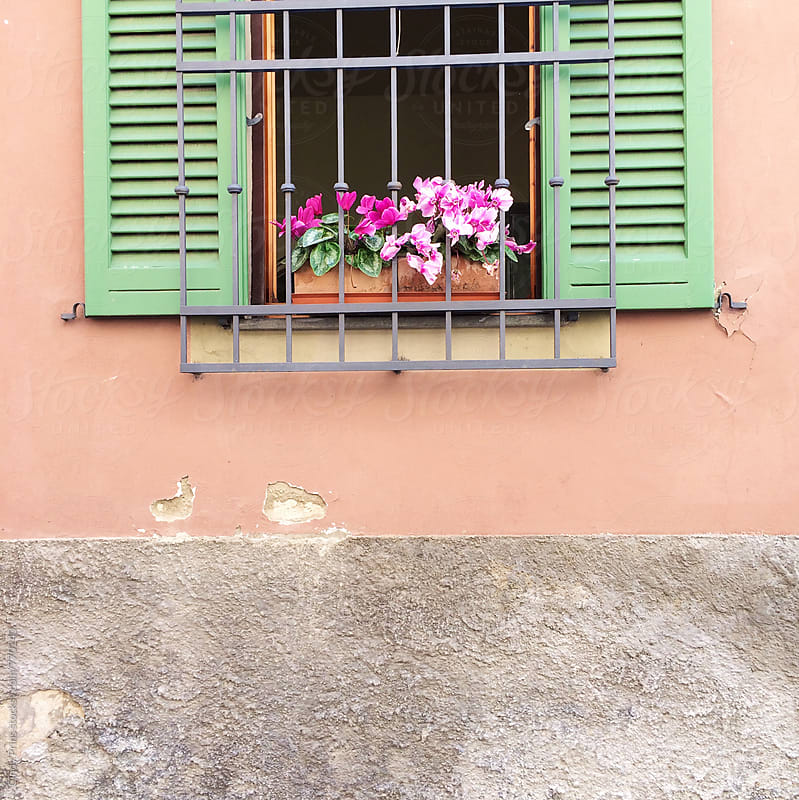 Orange wall with cute little window with green shutters and pink flowers by Cindy Prins for Stocksy United