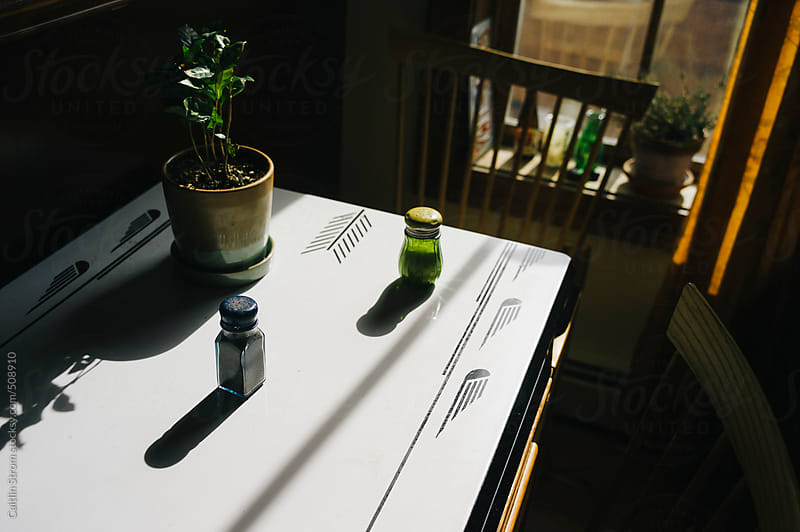 salt, pepper, and plant on a table by Caitlin Strom for Stocksy United