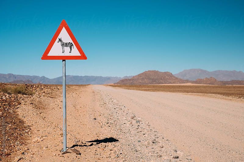 road sign syaing yield for zebras on a desert dirt track by Micky Wiswedel for Stocksy United