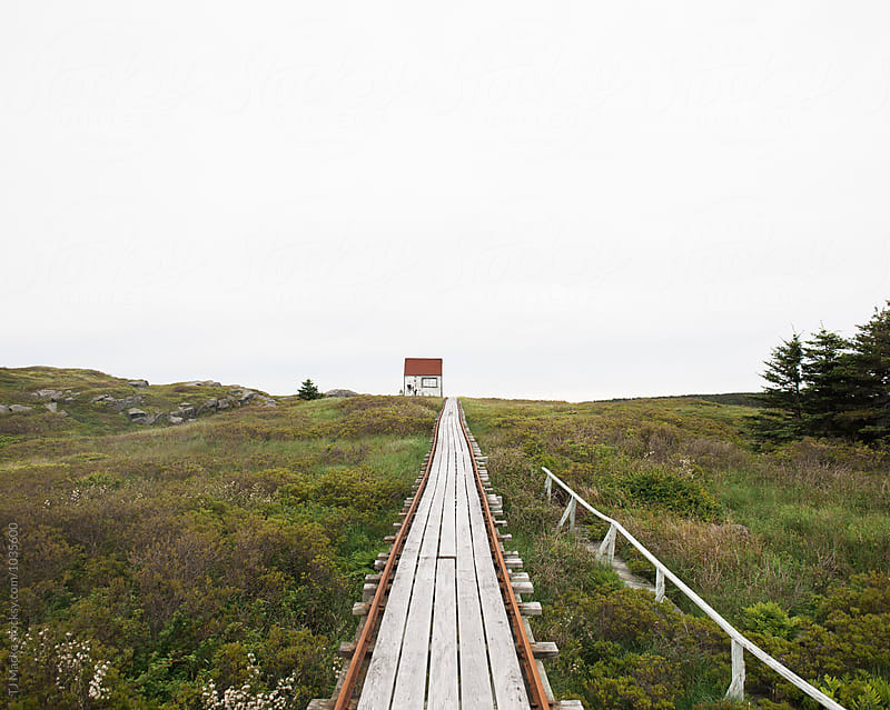 A red roofed shed sits by an old wooden path in the distance by TJ Macke for Stocksy United