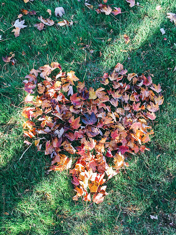 Autumn leaves in the shape of a heart on green grass by Holly Clark for Stocksy United