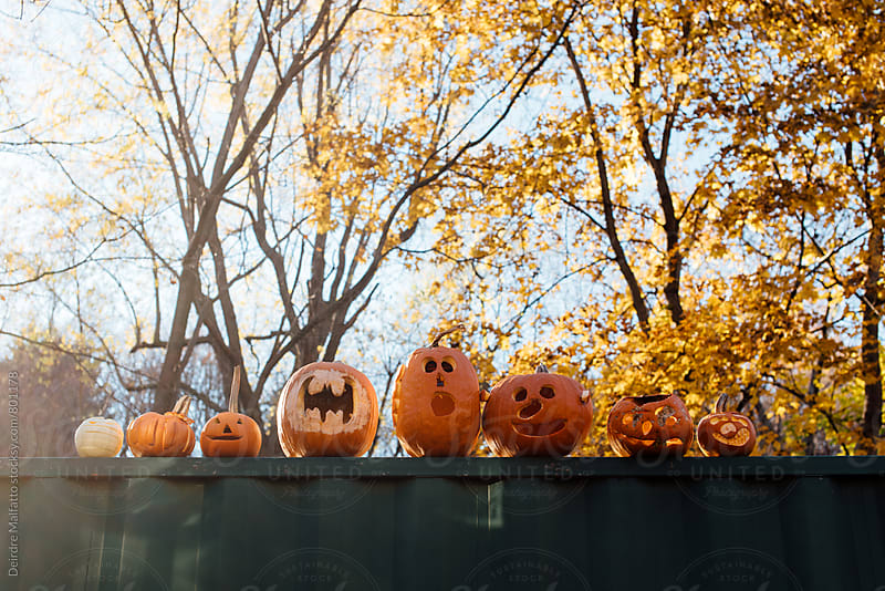 jack-o-lanterns rotting on the side of a dumpster after halloween by Deirdre Malfatto for Stocksy United