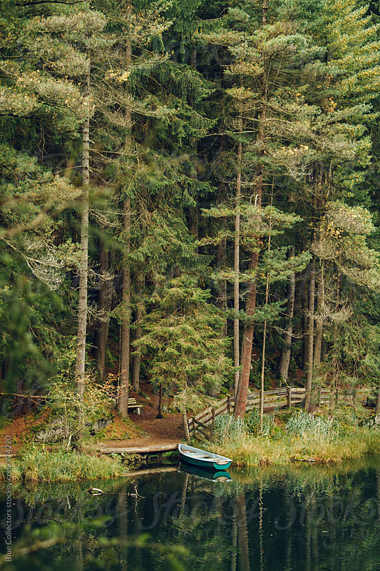 autumn Landscape with a boat resting on the beach of the lake by Blue Collectors for Stocksy United