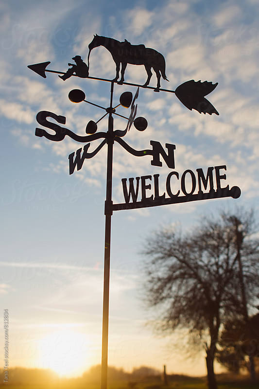 weathervane points south at sunset by Tana Teel for Stocksy United