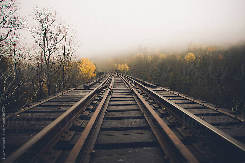 old wooden railway tracks with beautiful yellow Fall trees and fog in the distance by Lisa MacIntosh for Stocksy United
