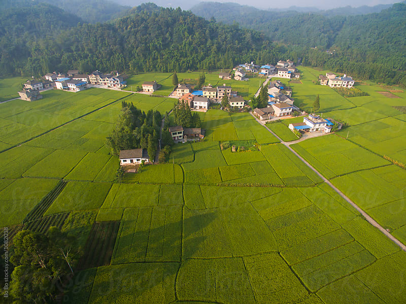 aerial view of small village in rice paddy at sunrise by Bo Bo for Stocksy United