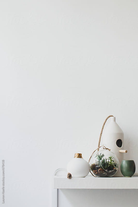 Shelf with terrarium by Lauren Naefe for Stocksy United