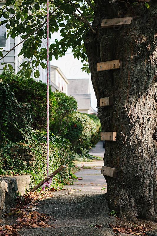 A tree swing outside on the sidewalk. by J Danielle Wehunt for Stocksy United