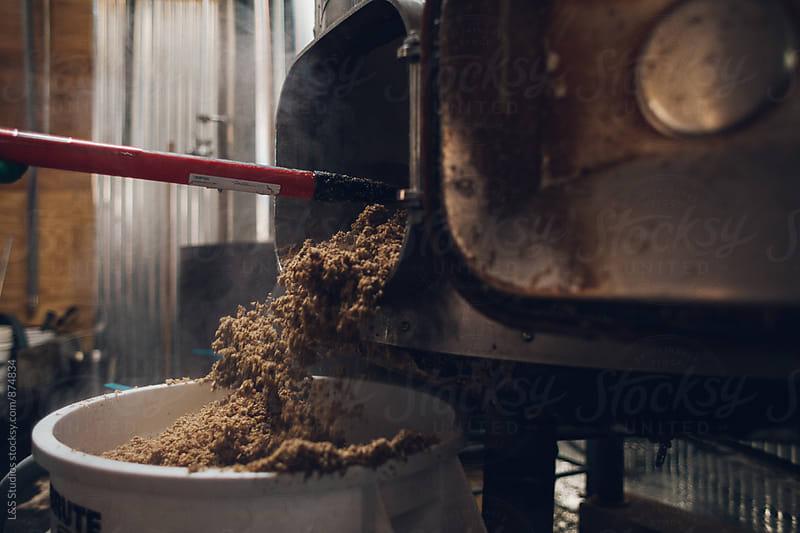 Grain Removal by L&S Studios for Stocksy United