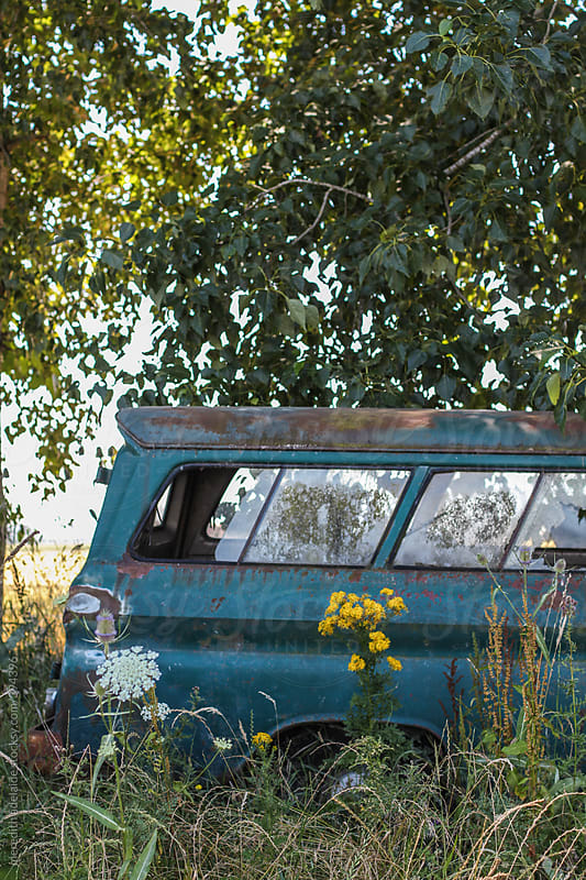 abandoned dead truck overgrowth in country field by meredith adelaide for Stocksy United