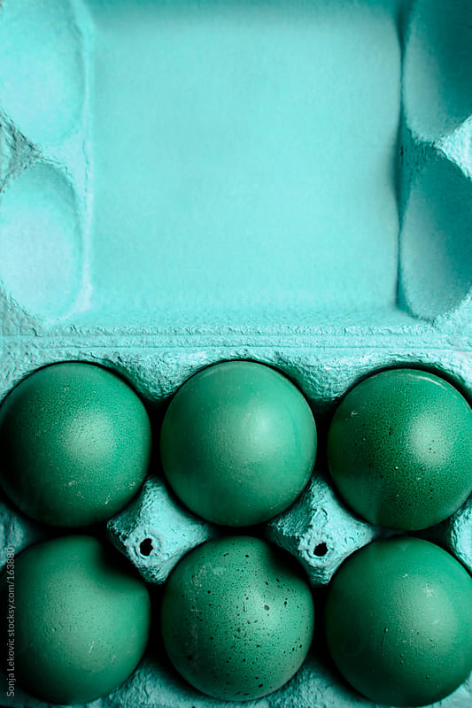 green eggs in a light blue carton by Sonja Lekovic for Stocksy United