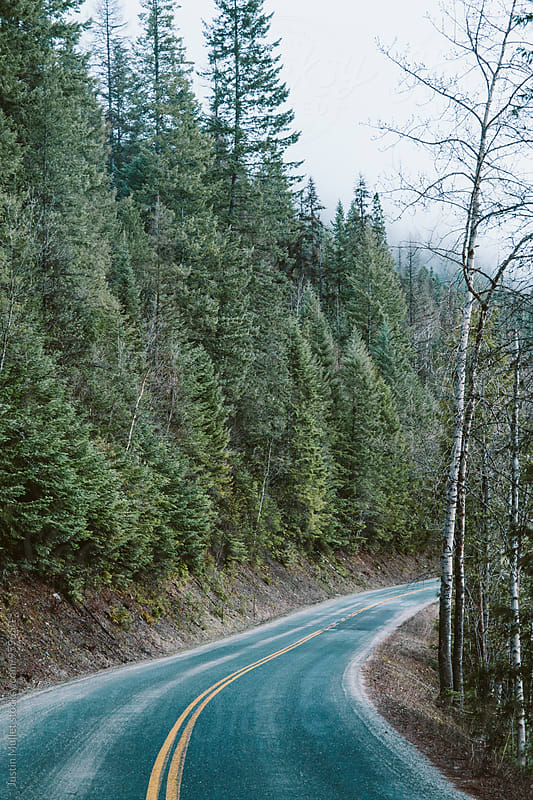 Winding mountain road in Washington. by Justin Mullet for Stocksy United