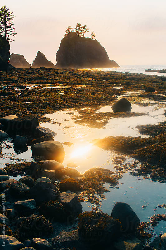 Sunset Reflects In A Coastal Tidal Pool Along The Pacific Ocean  by Luke Mattson for Stocksy United