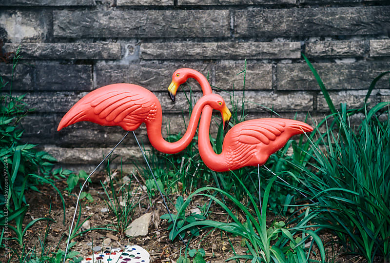Two Flamingos in Love by Raymond Forbes LLC for Stocksy United