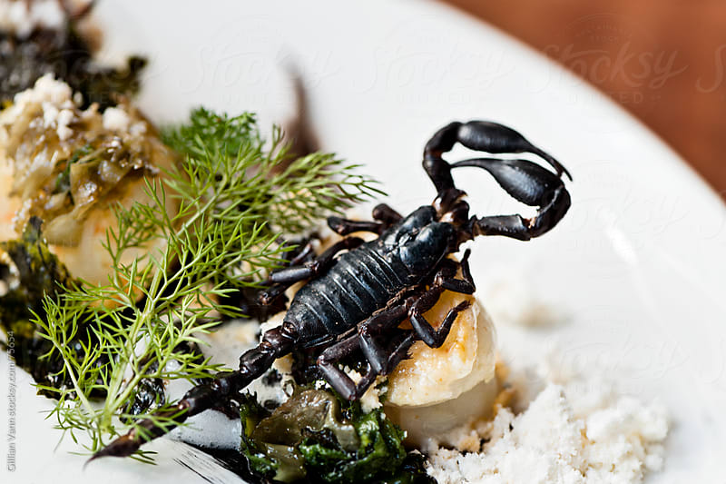 unusual food, wood fired scorpions  by Gillian Vann for Stocksy United