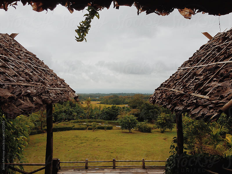 view of rice fields in thailand from back of grass hut by Jesse Morrow for Stocksy United