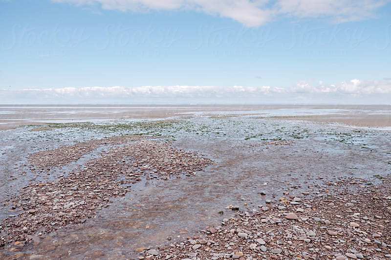 Mud flats as the tide goes out by Rebecca Spencer for Stocksy United