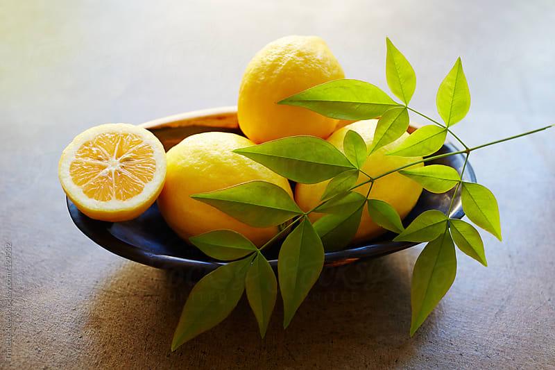 Still life of fresh meyer lemons in bowl by Trinette Reed for Stocksy United