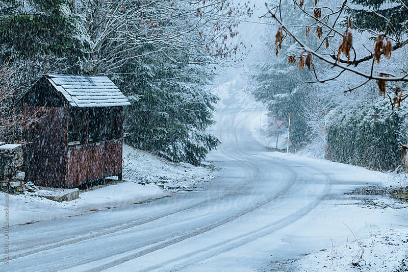 Snowing in a Countryside Road by VICTOR TORRES for Stocksy United