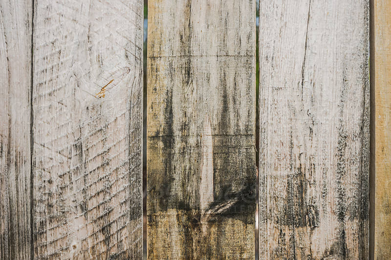 Wood Grain Plank Background by suzanne clements for Stocksy United