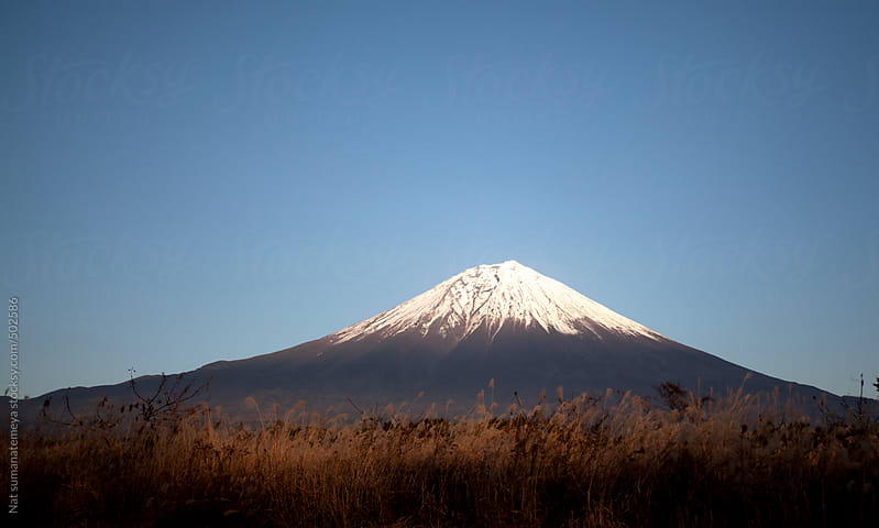 Mount Fiji  by Nat sumanatemeya for Stocksy United