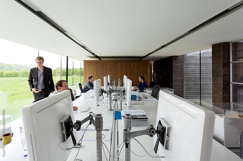 Modern office with eight computer monitors and four employees  by Paul Phillips for Stocksy United