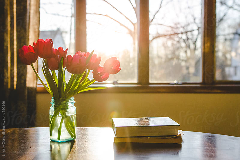 Tulips and books on a table in the sunlight by Lindsay Crandall for Stocksy United