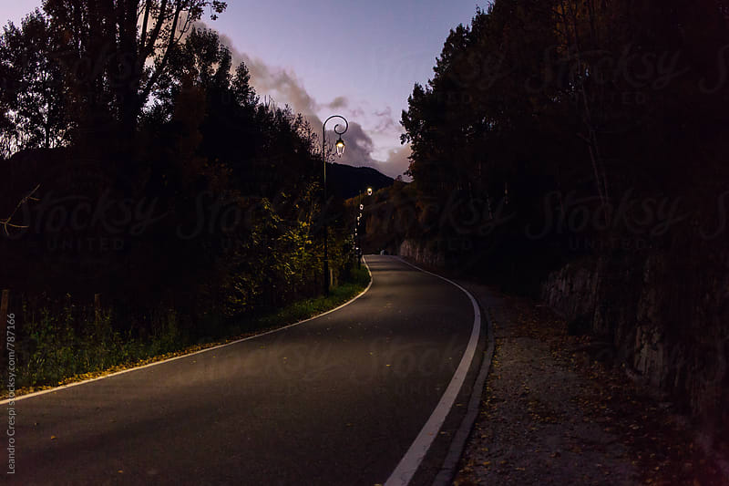 A road at night in autumn lighted by street lamps by Leandro Crespi for Stocksy United