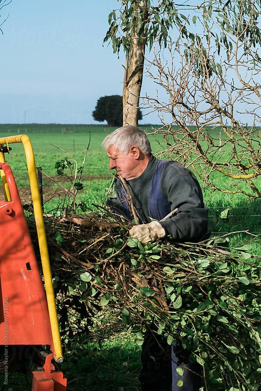 Senior man operating mulching machine by Rowena Naylor for Stocksy United