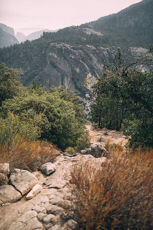 Yosemite by Jake Elko for Stocksy United