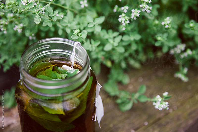 Sun Tea with Mint in the Garden by Holly Clark for Stocksy United