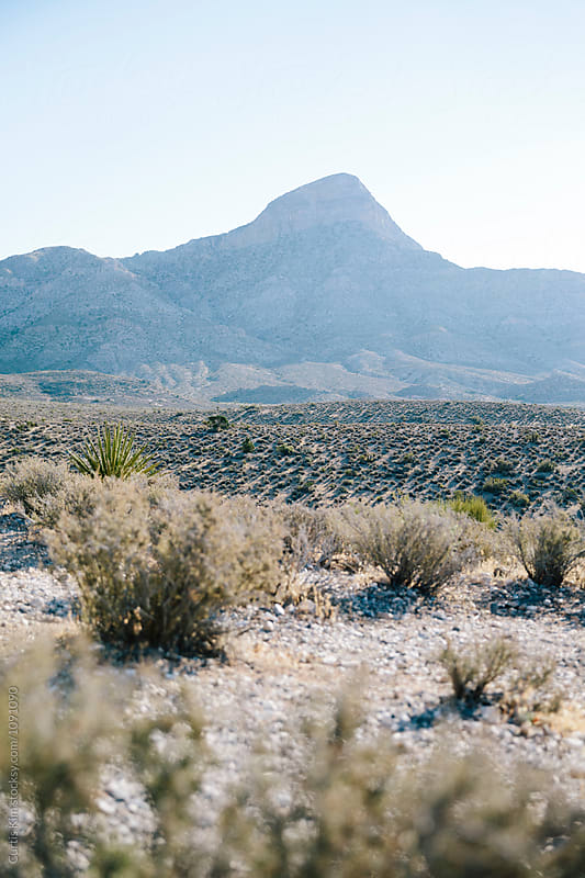 Desert with valley and mountains by Curtis Kim for Stocksy United