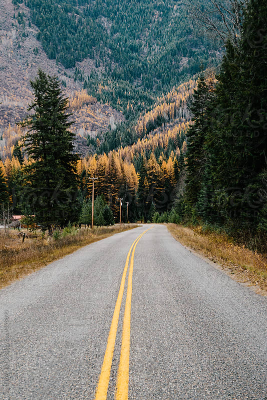 A rural road in Washington by Justin Mullet for Stocksy United