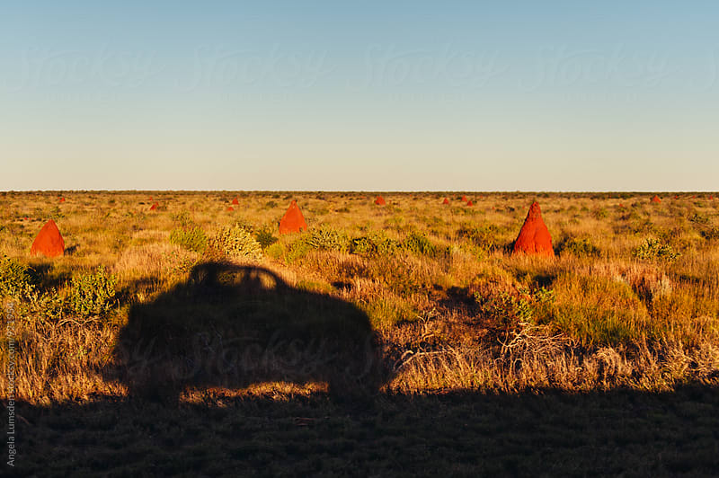 Shadow of a car amongst ant hills on the Ningaloo Coast by Angela Lumsden for Stocksy United