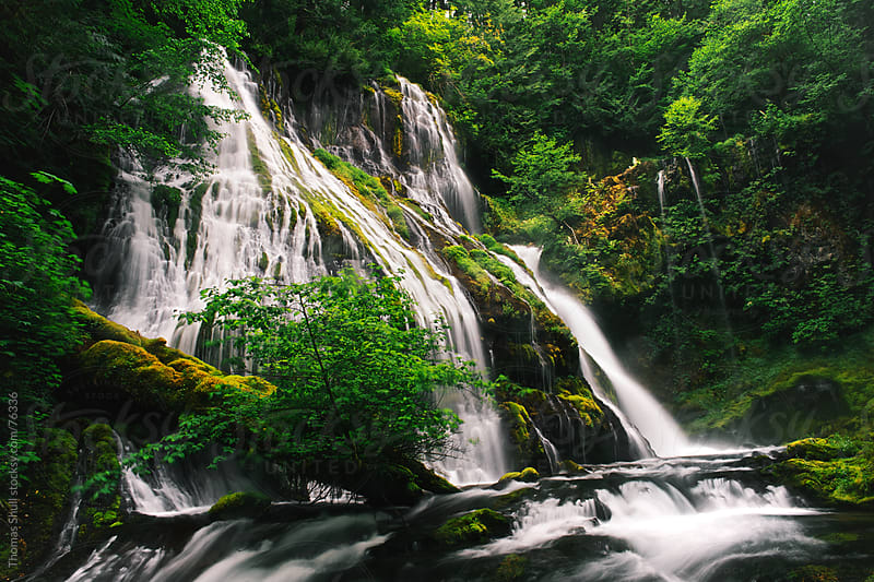 Panther Creek Waterfall,  Washington by Thomas Shull for Stocksy United