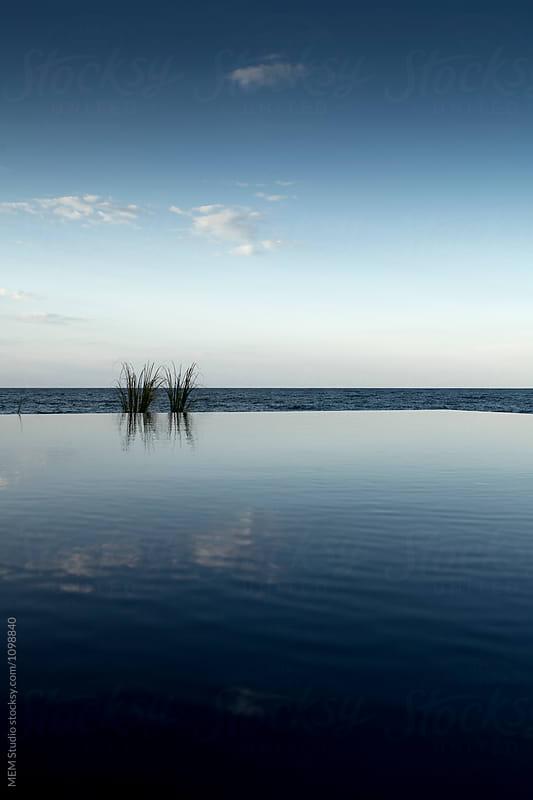 minimalistic pool view by MEM Studio for Stocksy United