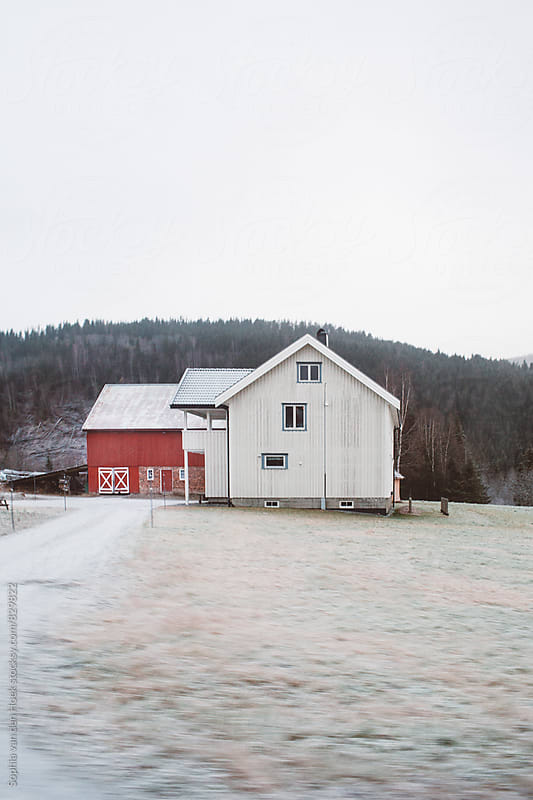 House in Norway by Sophia van den Hoek for Stocksy United